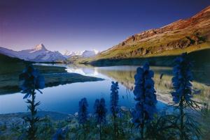 Semakin merenungi dan menghayati fenomena alam sekitar, semakin terasa kehadiran Tuhan di sisi kita.